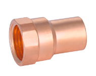 Female Straight Adaptor CxFPT