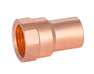 Female Straight Adaptor FTGxFPT