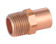 Male Straight Adaptor FTGxMPT